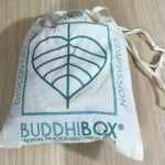 BuddhiBox Jewelry Subscription Box Review + Coupon- Feb 2016