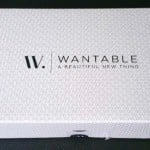 Wantable Makeup Subscription Box Review – December 2015