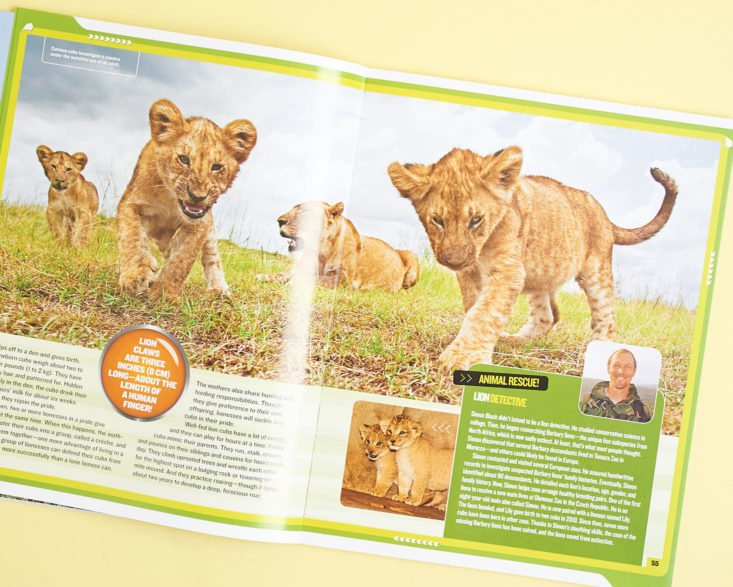 Mission: Lion Rescue book